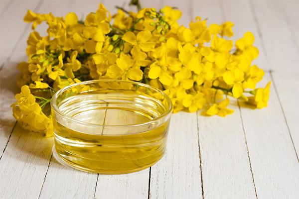 Польза рапсового масла и вред – Рапсовое масло: польза и вред, особенности применения для взрослых и в детском питании, состав, противопоказания