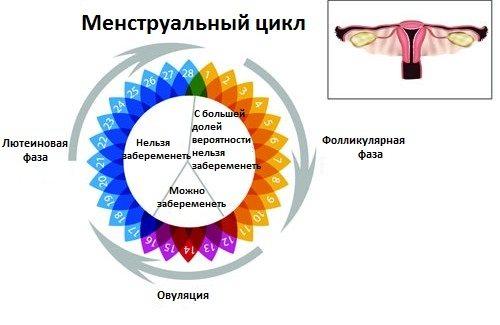 Причины нарушения менструационного цикла – задержки, редкие месячные, скудные менструации. Причины нарушений цикла. Почему при сбое цикла надо обращаться к врачу?